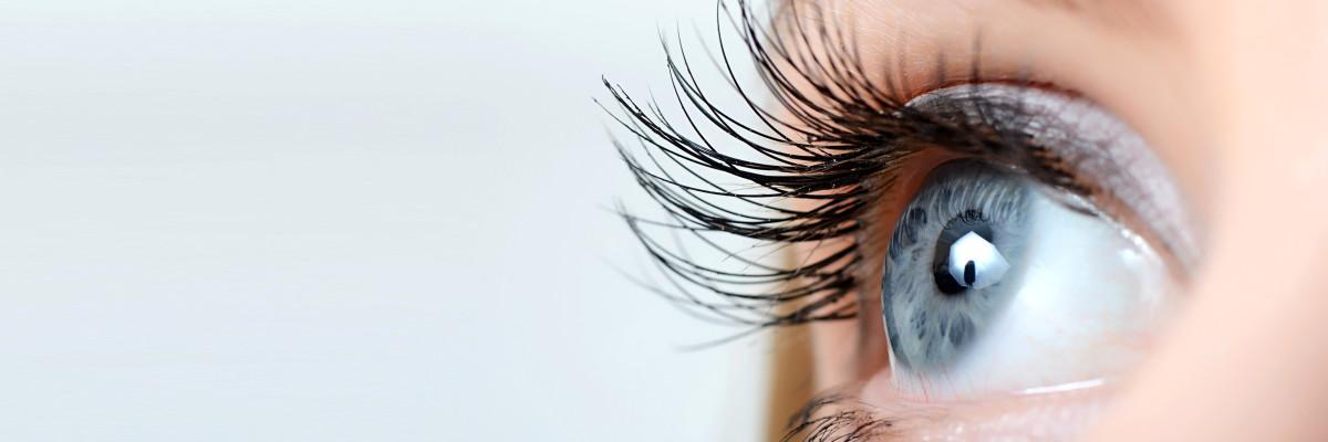 Mantén tus ojos sanos