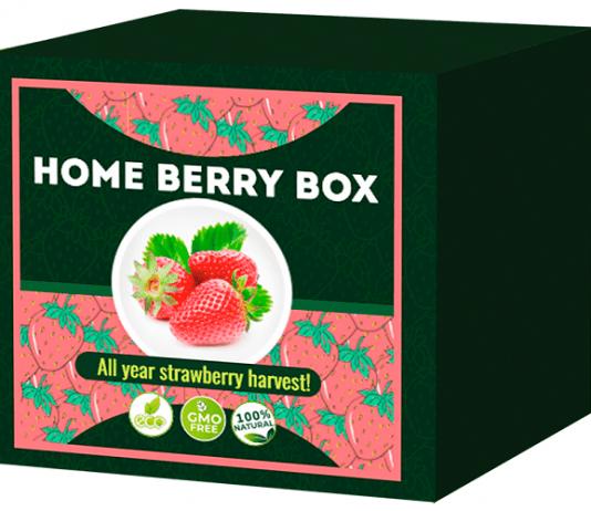 Home Berry Box opiniones 2020, precio, foro, donde comprar en farmacias, amazon, funciona, españa